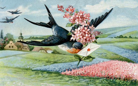 Victorian Mail Bird