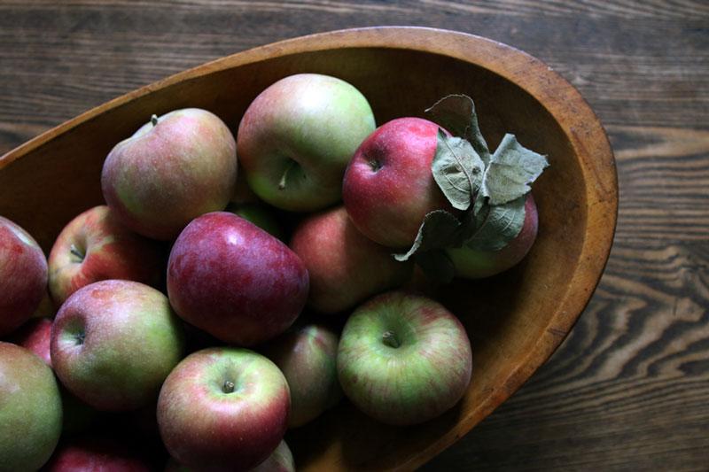 Apples: Rustic apple tart recipe