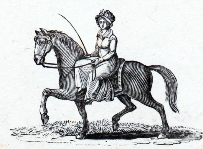 Bethesda-horse-web