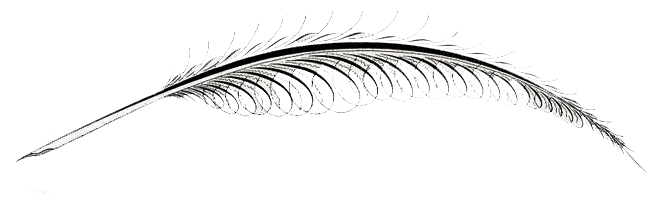 feather-web