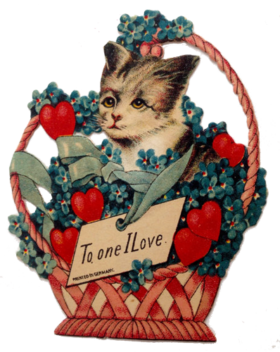 German-cat-Valentine